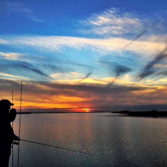 Louisiana-Marsh-Fishing-Charters